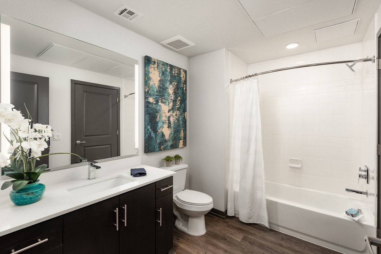 Norte Town Lake Apartments | Apartments in Tempe